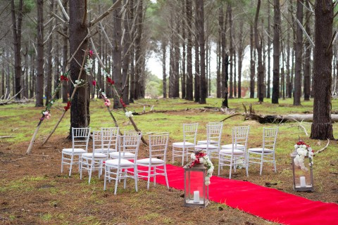 pine-forest-ceremony-01